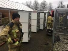 Brand in dierenverblijf bij school Meppel