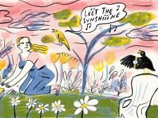 Vergeet barometer, klok en weerbericht: de madeliefjes, tuinplanten en vogels weten het beter
