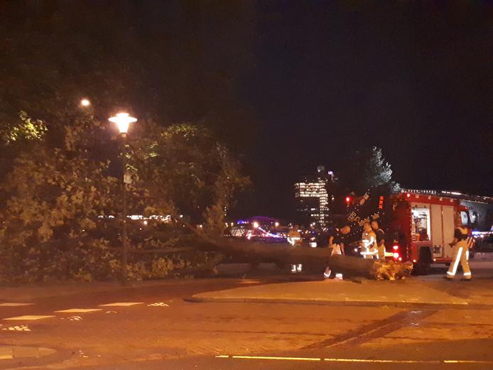 Omgevallen boom bij fietspad Prins Hendrikkade.