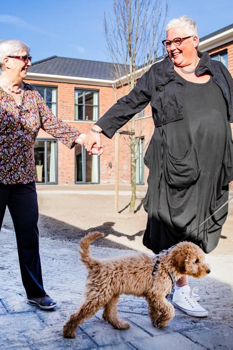 Dagelijks Leven uit Apeldoorn in top drie van beste werkgevers