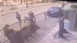 VIDEO: Agent vangt kind na metershoge val uit appartement