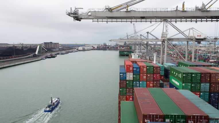 Containeropslag in de Rotterdamse haven. Beeld ANP
