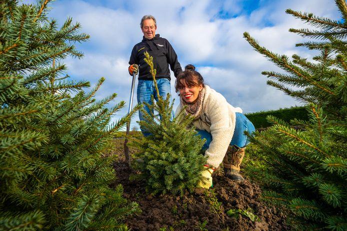Gerrit Goemaat en Sybille van Gammeren planten gebruikte kerstbomen terug om deze volgende jaren weer te gebruiken.