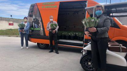 Knoks bedrijf schenkt 900 boeketten Zeeuwse tulpen aan medewerkers AZ Zeno