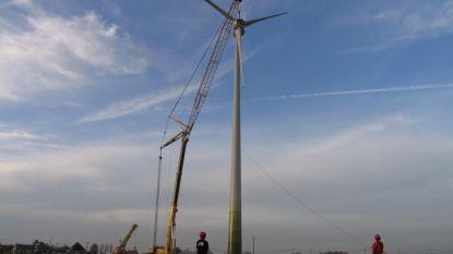 """Windmolens in Zottegem? """"Enkel mits voldoende draagvlak bij bevolking en maximale return"""""""