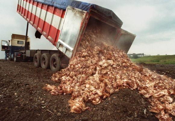 De dioxinecrisis van juni 1999 leidde tot het preventief ruimen van miljoenen kippen.