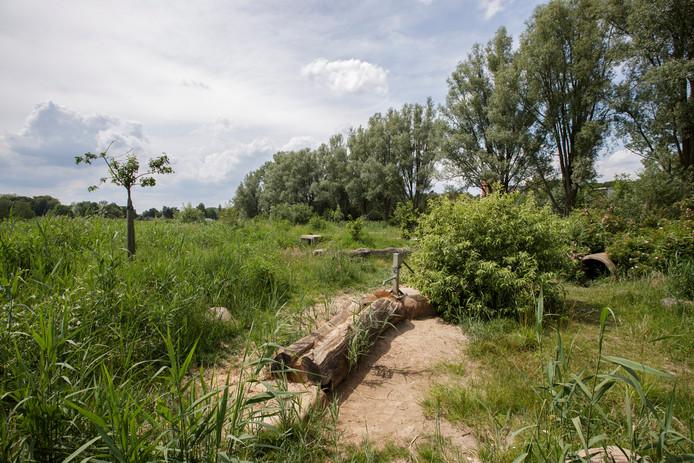 De natuurspeeltuin in het Berkelpark in Zutphen. Vorige week zou een verwarde man er een jongen in zijn schouder hebben gebeten.  © Patrick van Gemert/Zutphens Persburea