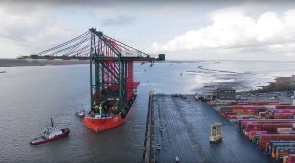 De kranen komen aan in de Antwerpse haven.