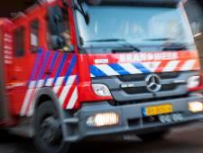 Hennepkwekerij gevonden bij brand aan Oranjeboomstraat
