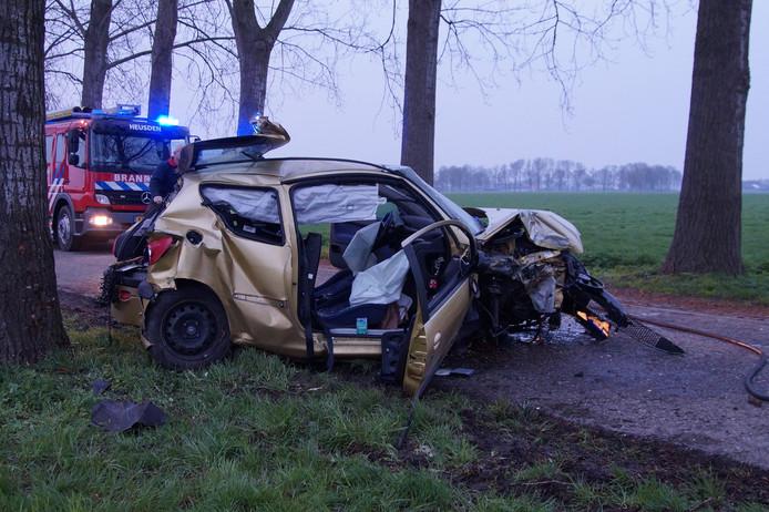 Auto botst tegen boom in Herpt.