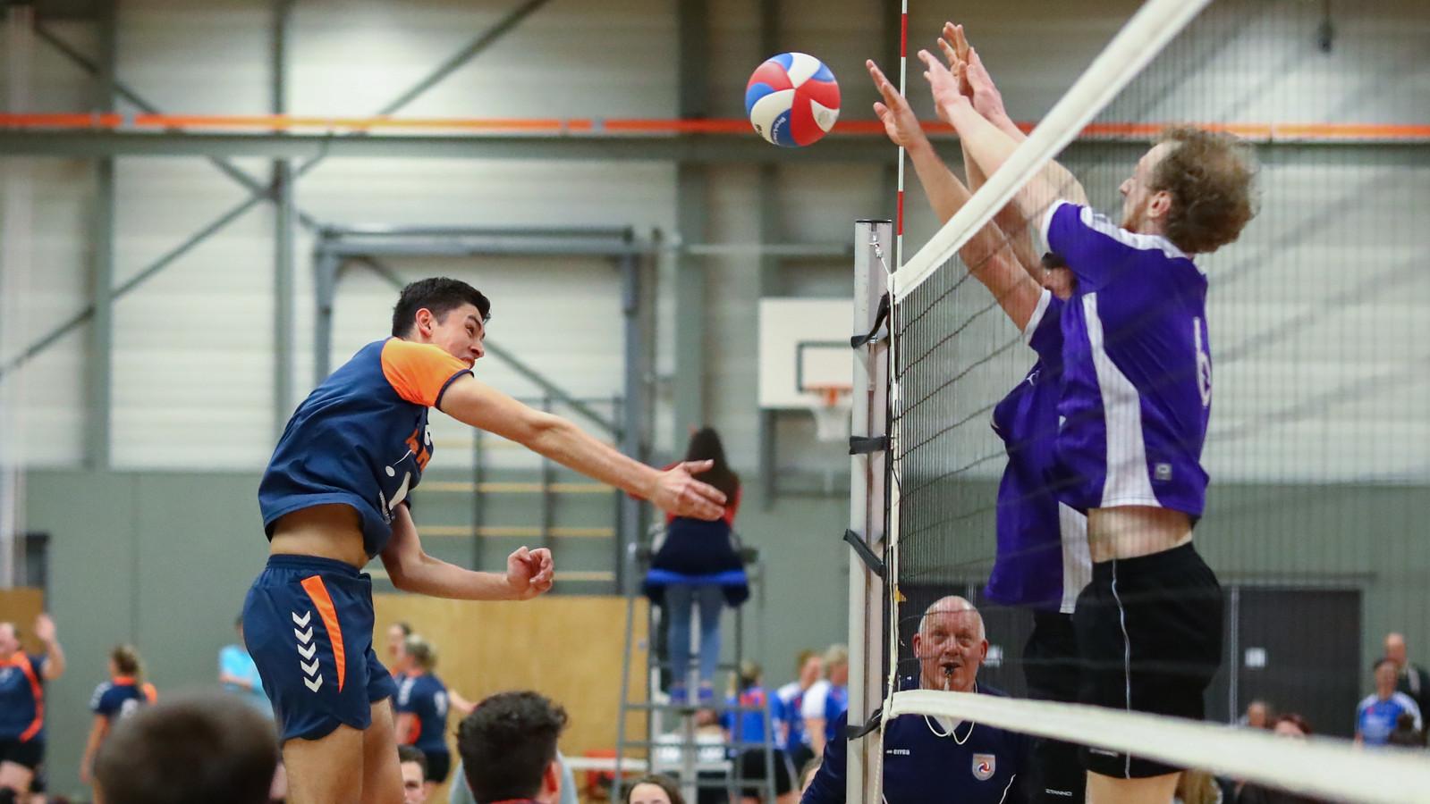 De volleyballers van Bovo zijn gepromoveerd naar de eerste divisie.