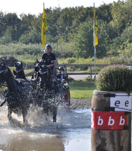Recreatieruiters Zeeuws-Vlaanderen vieren eerste lustrum met vierspanrijden