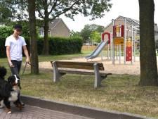 Verontwaardiging over verdwijnen houten speelschip in Boxmeerse wijk Van Speyk