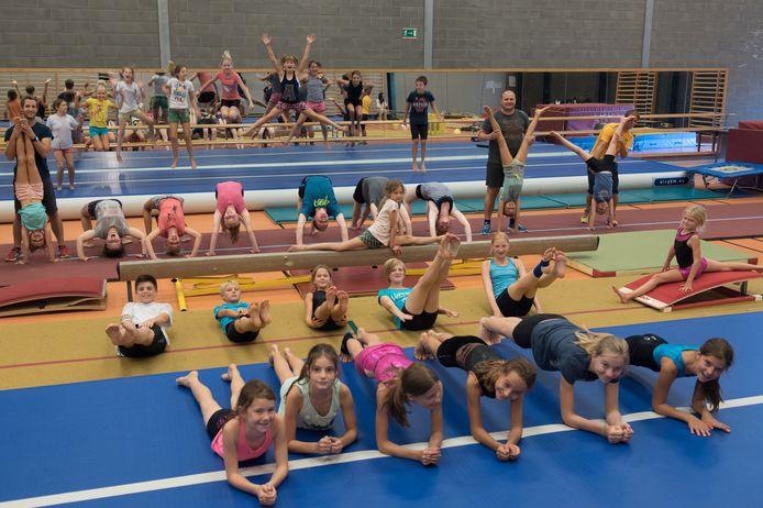De gymnasten geven een demonstratie.