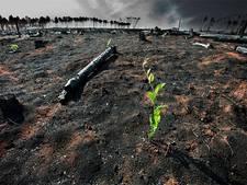 'Klimaatverandering wellicht erger dan gedacht door meetfout'