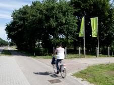 'Verwarrende vlaggen zijn gevaar voor verkeer op Rijksweg Malden'