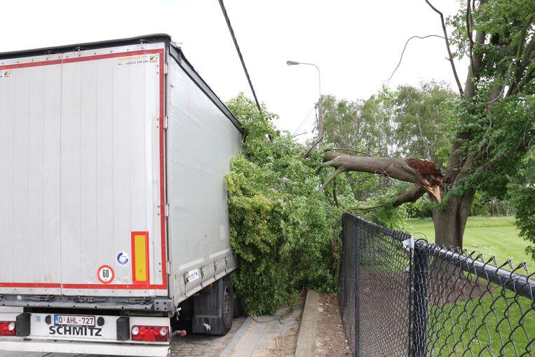 De boom knakte af en kwam op de vrachtwagen terecht.
