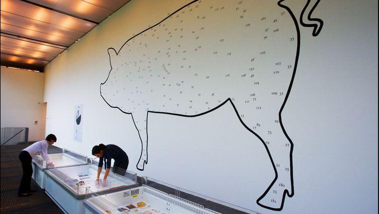 Vorig jaar ging een van de prijzen naar vormgever Christien Meindertsma die bekend werd door de tentoonstelling PIG. © ANP Beeld