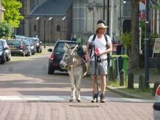 Theatermaker Tjerk Ridder doet met ezel Lodewijk Zaltbommel aan tijdens pelgrimstocht
