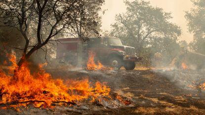 Bosbranden Californië blijven mensenleven eisen