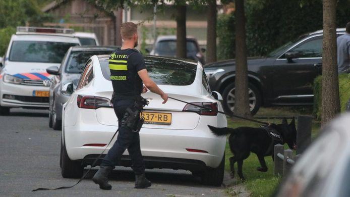 In de wijk wordt met politiehonden naar de verdachte gezocht.