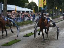 Paardenevenement Bemmel verplaatst naar Groningen