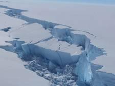 Losgescheurde mega-ijsschots legt uniek ecosysteem tijdelijk bloot