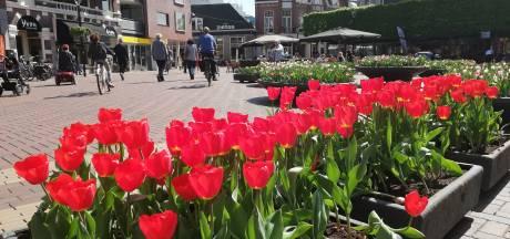 Tulpen Koornmarkt Almelo in bloei