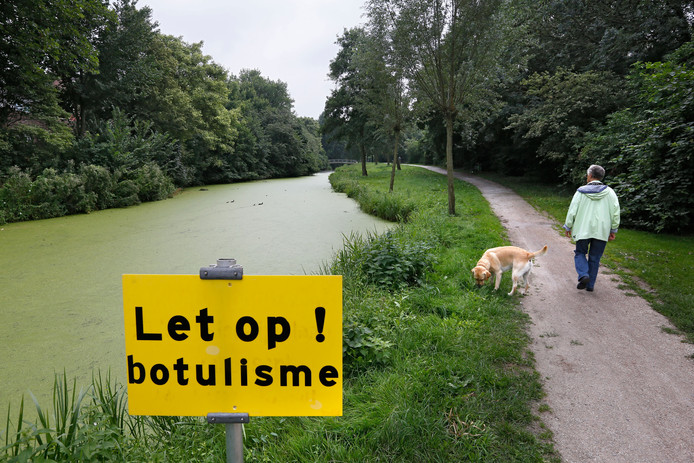 Een dergelijk waarschuwingsbord kan nog niet worden geplaatst in het Venenpark, omdat nog niet is vastgesteld of de dode eenden in de Rivierenwijk daadwerkelijk door botulisme getroffen waren.