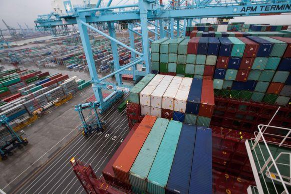 De vijf werden betrapt in de haven van Zeebrugge.