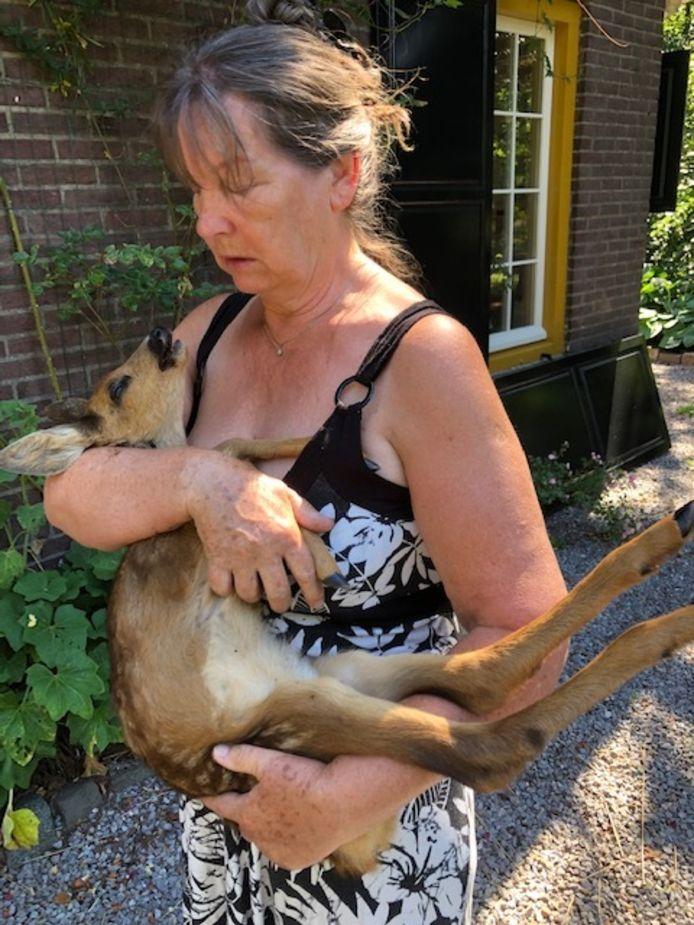 Mieke van Lieshout met het reekalfje dat een aanval van zes loslopende honden niet overleefde.