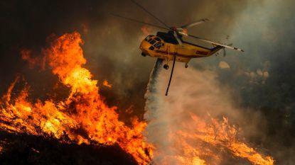 Aantal actieve natuurbranden in VS loopt op tot 100: 30.000 brandweerlieden ingezet