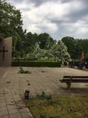 De twee grootste bomen van Liessel waaien om en belanden midden op het kerkhof.