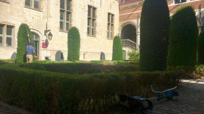 Tuinen in Mechelse gerechtsgebouw opgefrist