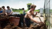 Project moet kwaliteit huisvesting seizoensarbeiders verbeteren