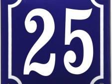 Huisnummers 25 in Bernheze op de foto voor jubileumfeest