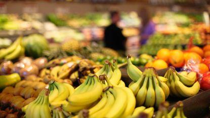 Bananensector in rep en roer door niets ontziende schimmel: worden de gele vruchten binnenkort fiks duurder?
