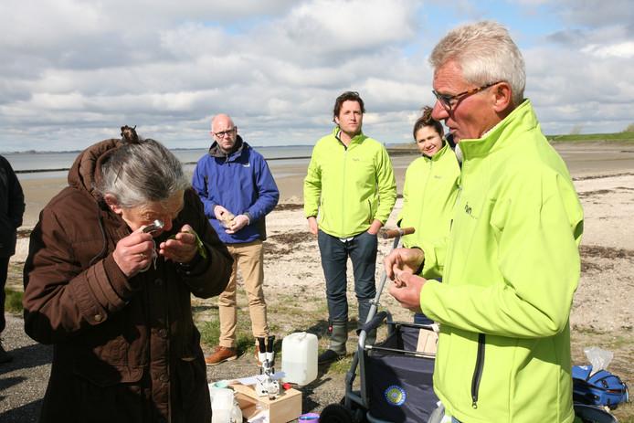 De kersverse natuuroma Anneke Suurland bekijkt een stuk zeewier door een vergrootglas. George Koenders van het IVN geeft uitleg.