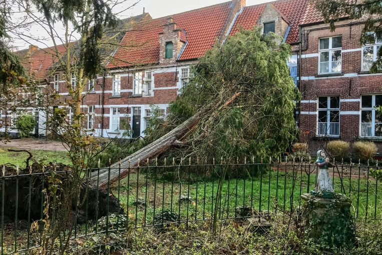 Schietgebedjes van de heilige Bernadette ten spijt, bleef ook het begijnhof niet door de storm gespaard.