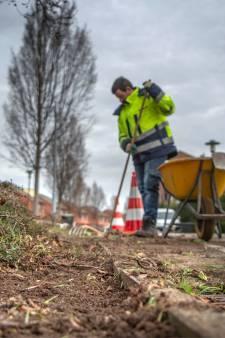 'Gladiatoren van de groenstrook' gaan in Druten van start