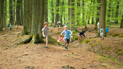Groen wil in elke provincie een Nationaal Park: Drongengoed in Ursel voor Oost-Vlaanderen