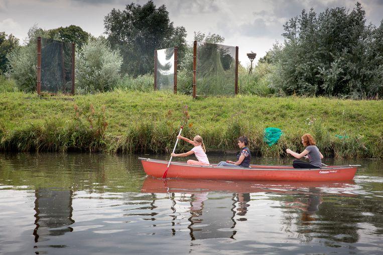 Looking Glass van Janina Schipper aan het Apeldoorns kanaal bij de Hoenwaard Beeld Herman Engbers