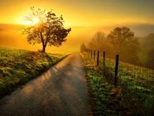 Soleil et douceur pour réchauffer les cœurs
