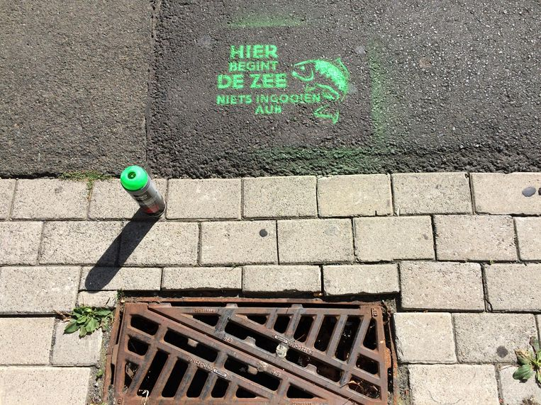Bij heel wat rioolputjes in Vlaanderen kan je de boodschap 'Hier begint de zee. Niets ingooien aub' terugvinden