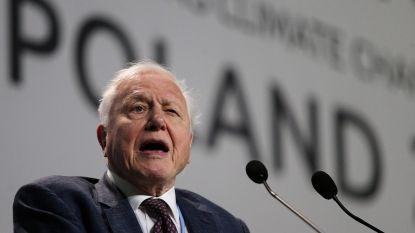 """David Attenborough maant politici aan tot actie op klimaattop in Polen: """"Voortbestaan van de wereld waar we afhankelijk van zijn, ligt in jullie handen"""""""