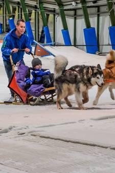 Grootste droom van doodzieke Brent (9) in vervulling: sleeën met husky's