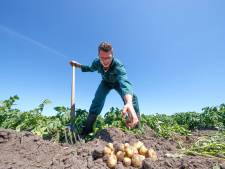 Jonge boeren voegen vierde A toe aan de drie A's van de Brabantse Wal: de aardappel