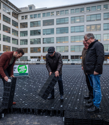'Prins Clausplein Eindhoven met groen en waterberging is straks mini-airco voor binnenstad'