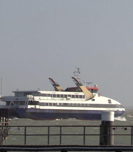 Westerschelde Ferry wordt twee avonden bioscoop tijdens Film by the Sea