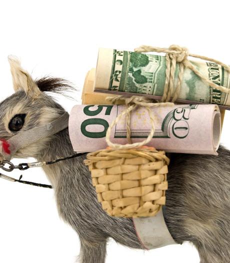 Vier Zeeuwse 'geldezels' opgepakt voor witwassen crimineel geld